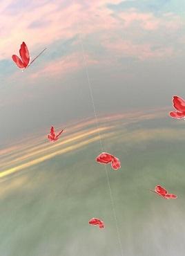酷讯的3D蝴蝶天空飞舞特效