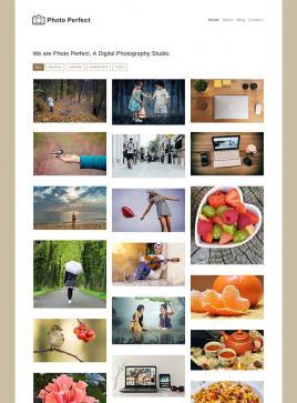 响应式的个人摄影作品展示博客模板