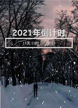 唯美的下雪动画新年倒计时专题模板