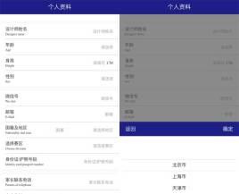 蓝色大气简洁的手机端资料提交模板