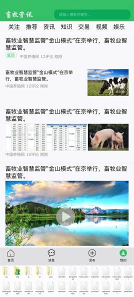 绿色的手机APP畜牧资讯页面模板